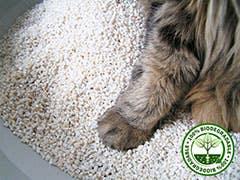 Cat in Granules