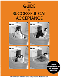 Your guide to successful cat acceptance manual